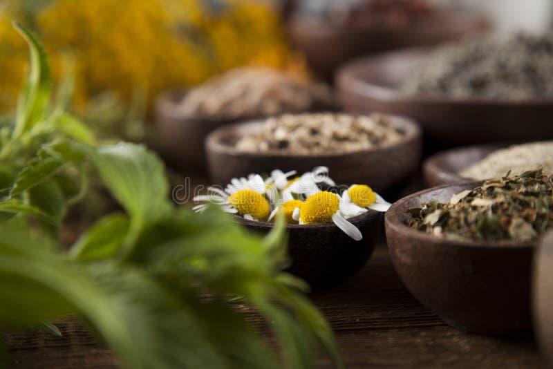 Médecine naturelle, herbes, mortier sur le fond en bois de table photographie stock libre de droits