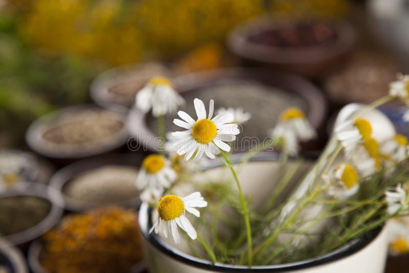 Médecine naturelle, herbes, mortier sur le fond en bois de table image libre de droits