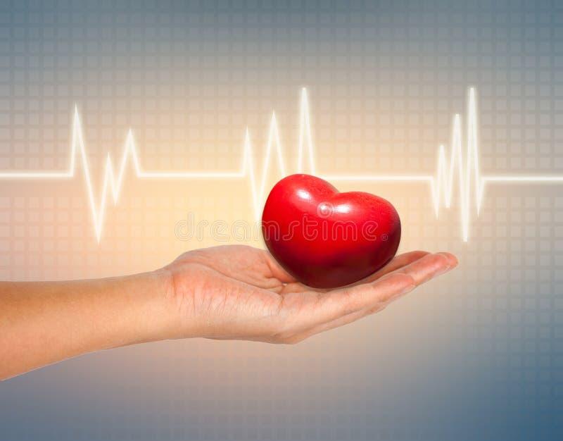 Médico y el concepto de los cuidados, corazón rojo en mano femenina con ECG foto de archivo libre de regalías