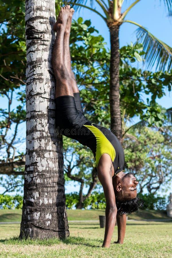 Médicos novos do homem da ioga que fazem a ioga na natureza Homem indiano asiático dos iogues na grama no parque Ilha de Bali fotos de stock royalty free