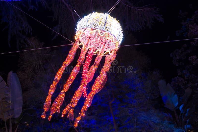 Méduses de lumières de Noël images libres de droits
