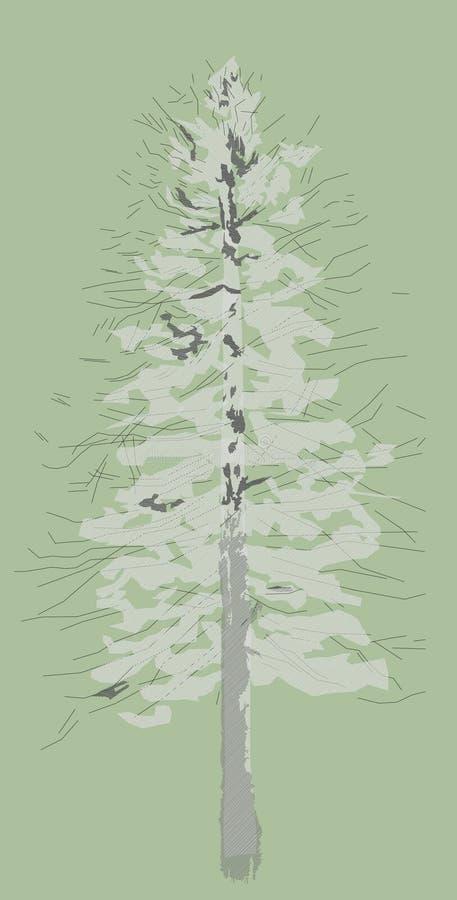 Mélèze d'hiver, image colorée illustration de vecteur