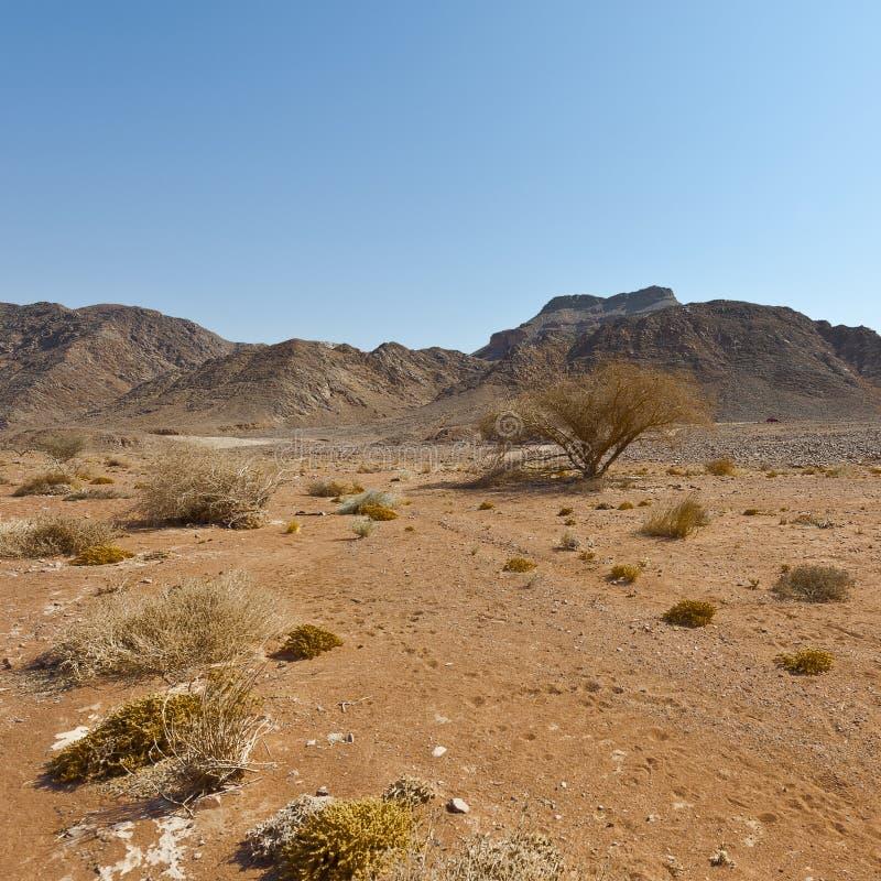 Mélancolie et vide du désert en Israël photographie stock
