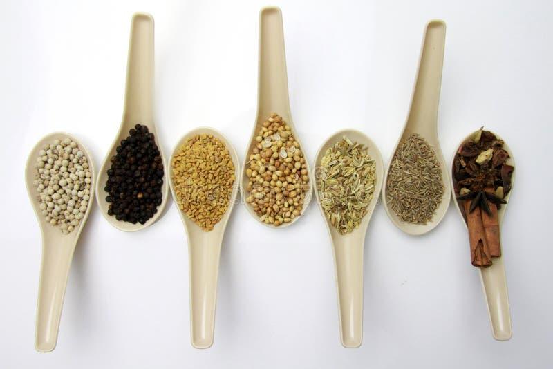 Mélangé des épices et des herbes dans une cuillère image stock