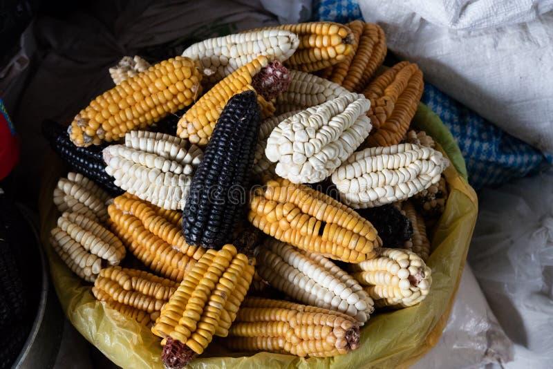 Mélange des grains péruviens photographie stock