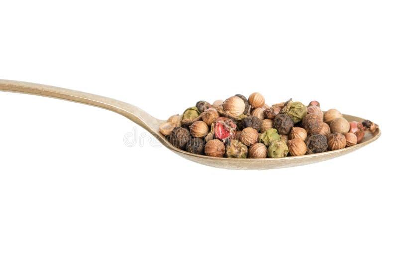 Mélange des poivrons chauds, rouges, noirs, blancs et du poivron vert dans une cuillère D'isolement sur le fond blanc photo libre de droits