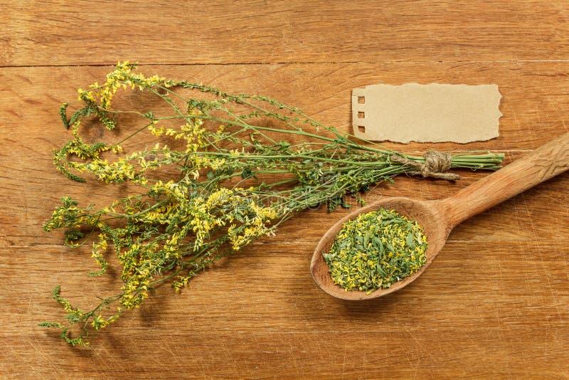 Mélilot Herbes sèches Phytothérapie, médicinal phytotherapy il photographie stock
