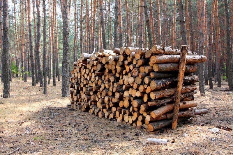 Mémoire de bois de chauffage photo libre de droits