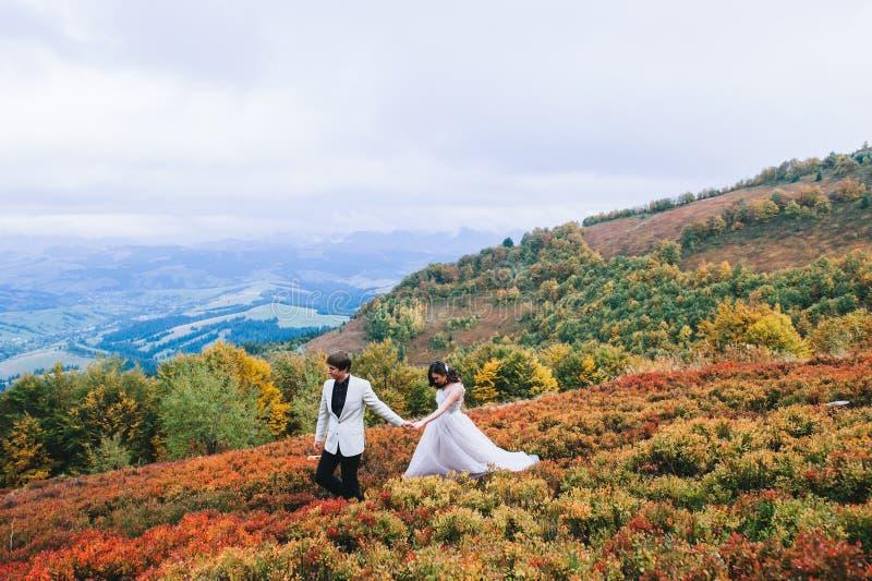 Ménages mariés nouvellement posant dans les montagnes images libres de droits