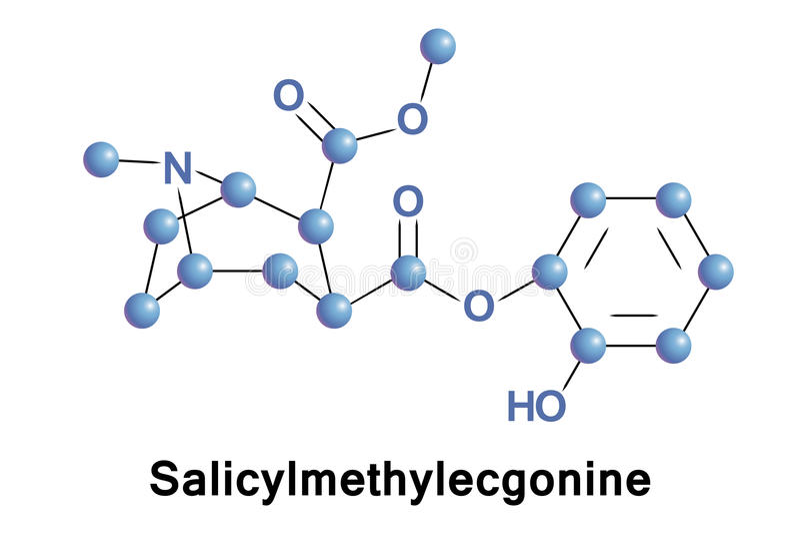 Métabolite de Salicylmethylecgonine de cocaïne illustration libre de droits