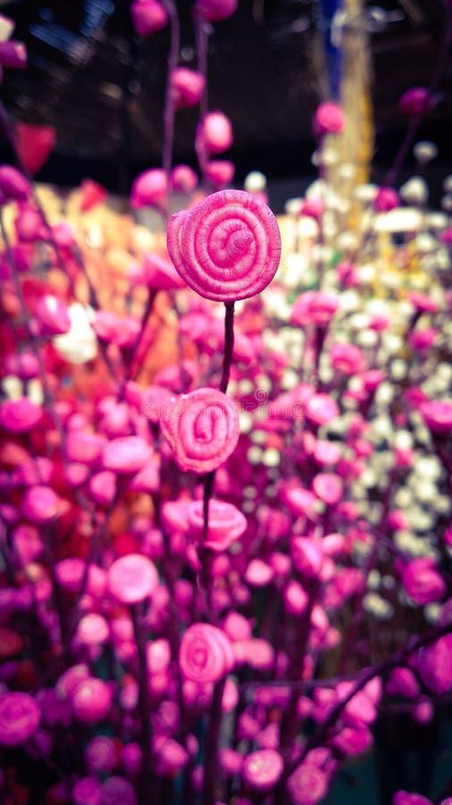 Métier de Rose photographie stock libre de droits
