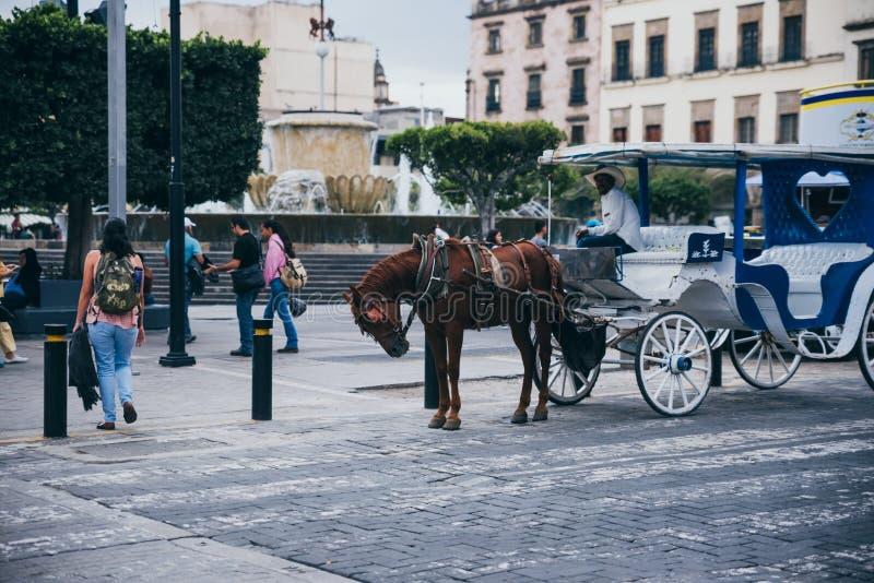 MÉXICO - 25 DE SEPTIEMBRE: Carro que es tirado por un caballo, Septembe fotos de archivo libres de regalías