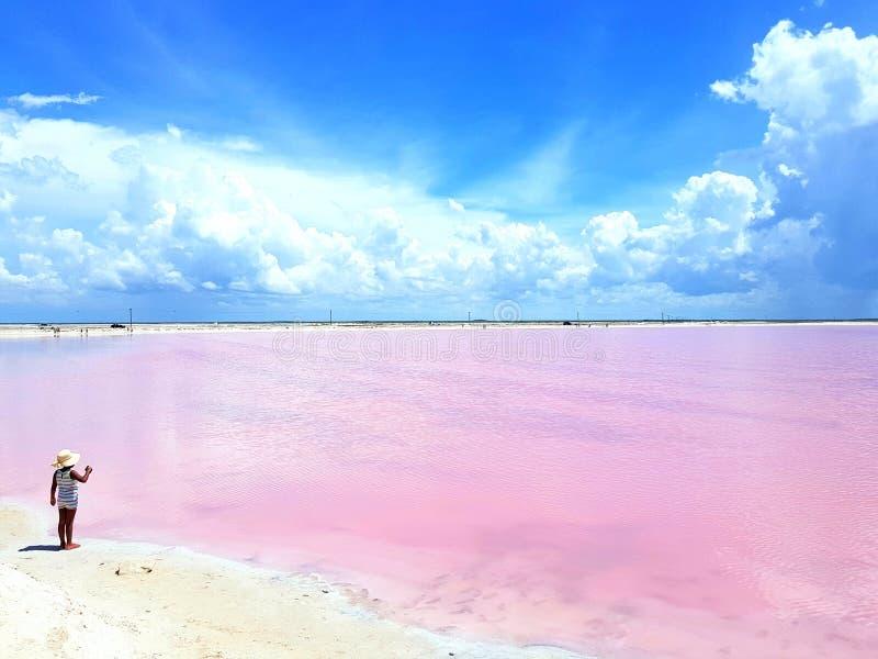 Même la petite fille ne peut pas résister à la lagune rose avec du charme dans Las Coloradas Yucatan Mexique images stock