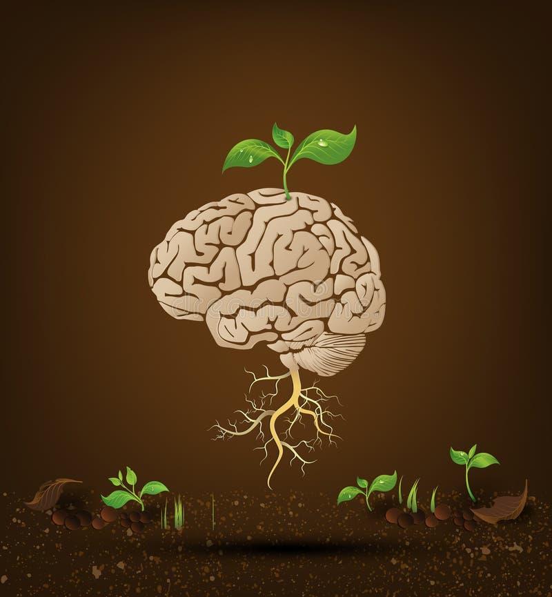 Móżdżkowa drzewna ilustracja ilustracja wektor
