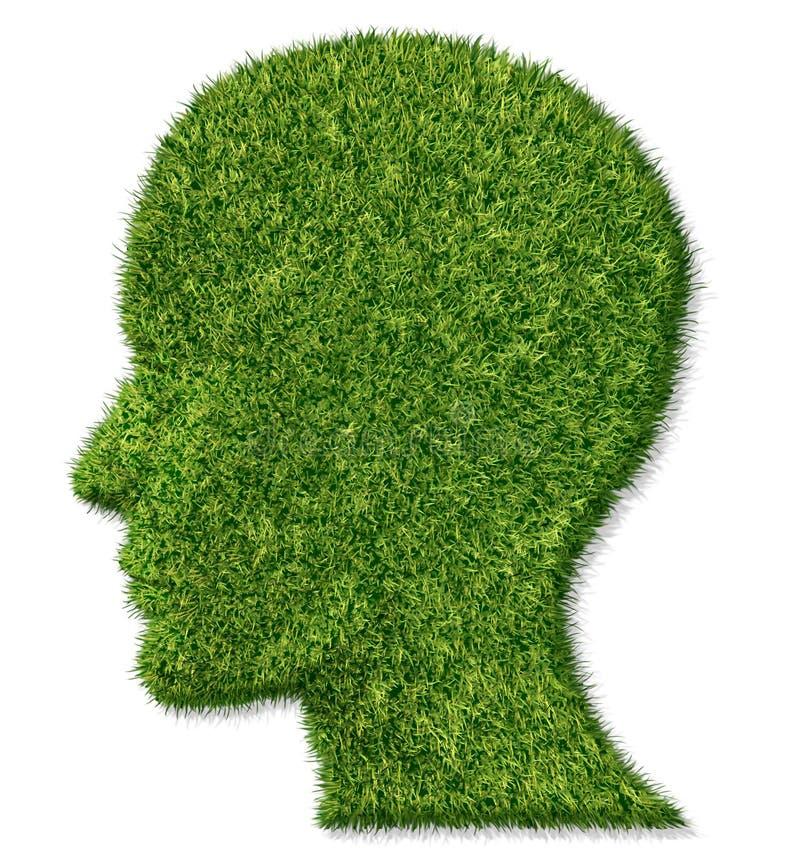 móżdżkowa funkcja zdrowie pamięć ilustracja wektor