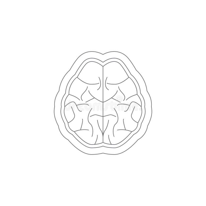 Móżdżkowa ikona Prosta element ilustracja Móżdżkowy symbolu projekta szablon Może używać dla sieci i wiszącej ozdoby royalty ilustracja