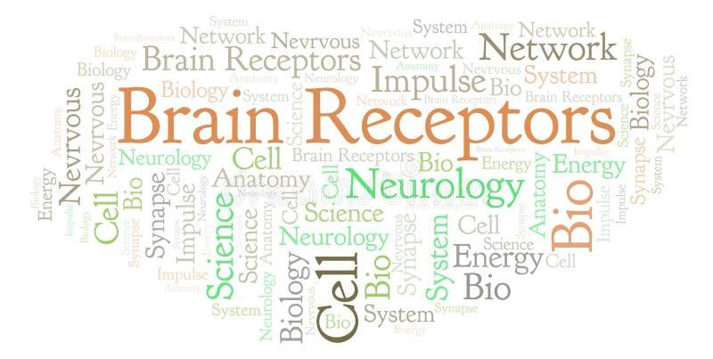 Móżdżkowa receptoru słowa chmura ilustracja wektor