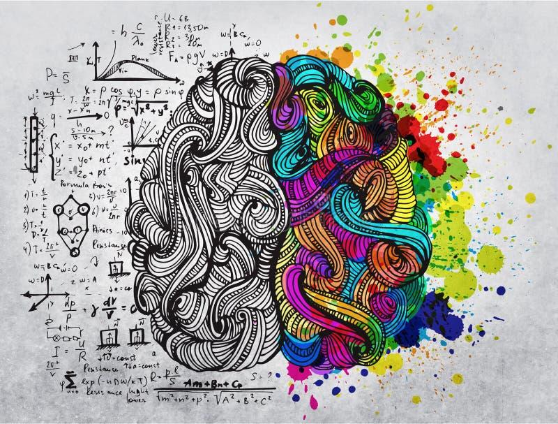 Móżdżkowy doodle pojęcie o kreatywnie prawej stronie i logicznej lewej stronie ilustracji