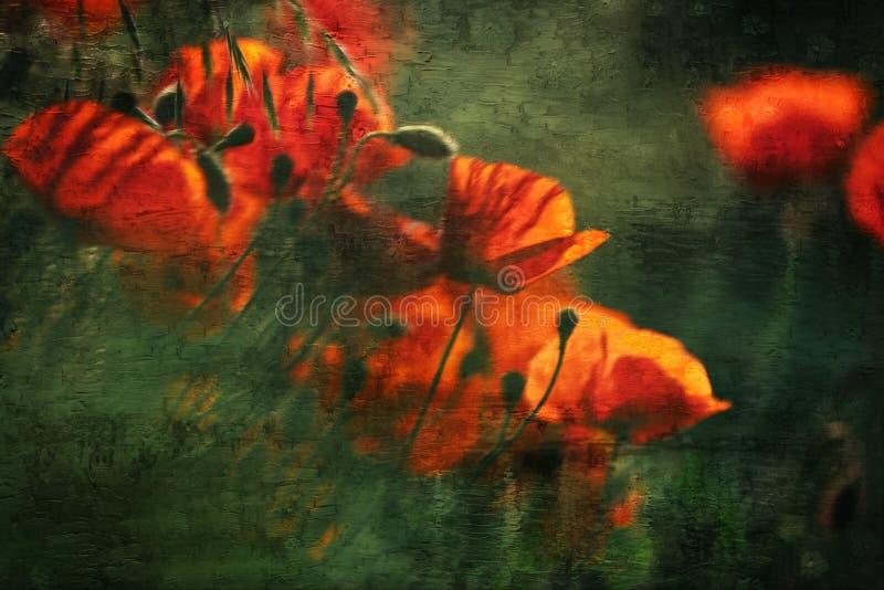 Mój kwiatu tła hargita Otto fotografia royalty free