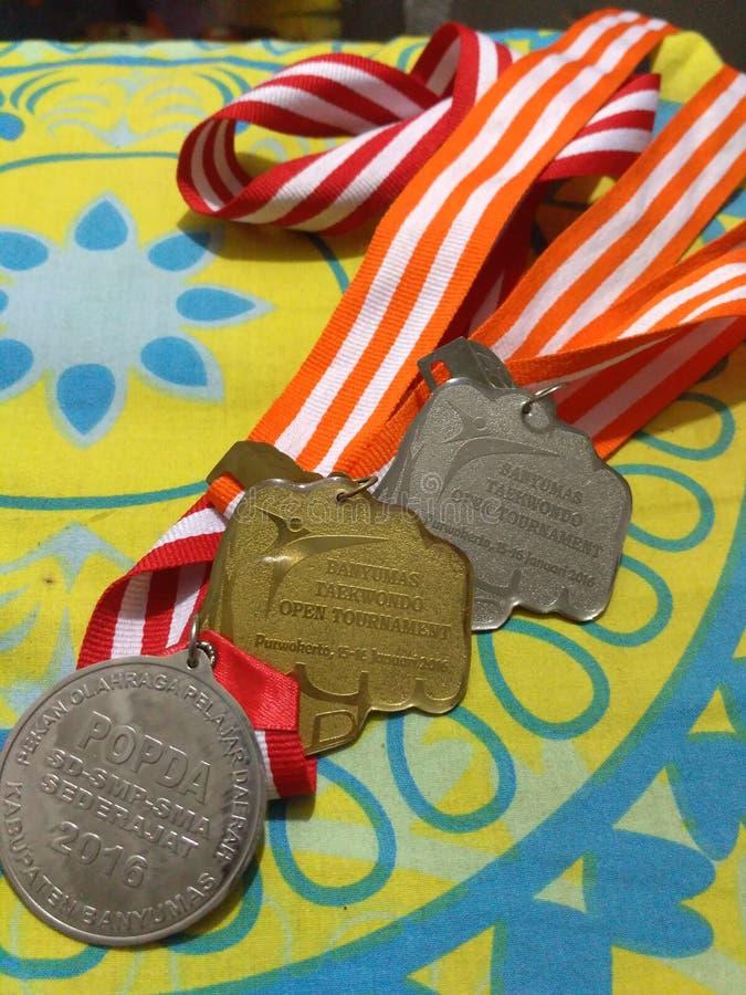Mój medal zdjęcia stock