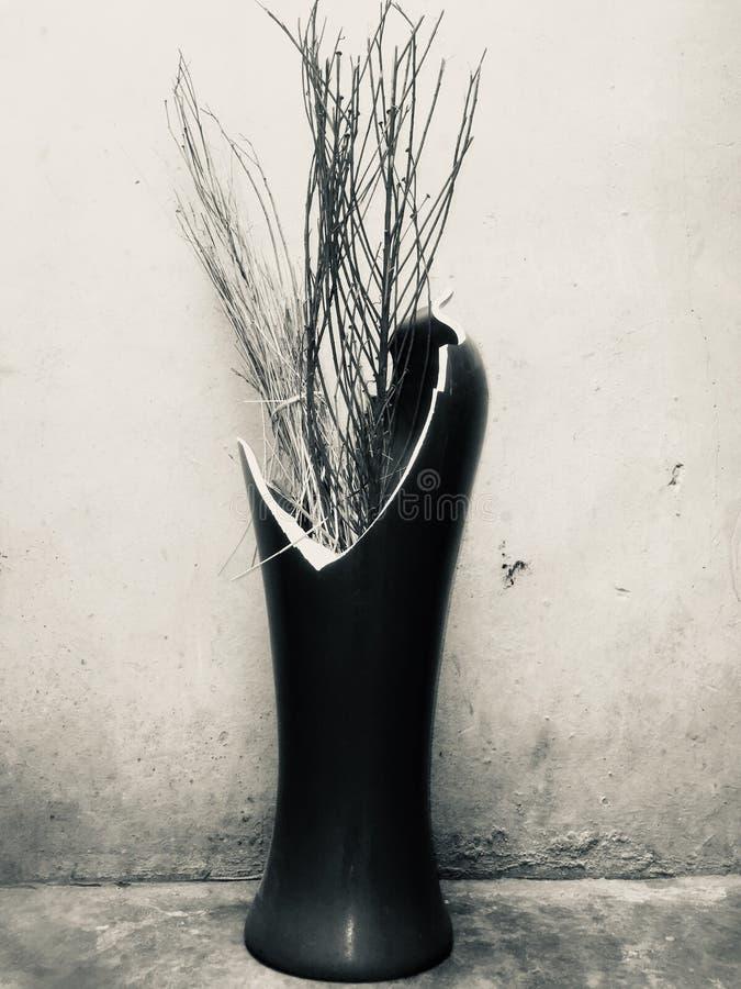 Mój piękna łamająca kwiat waza fotografia stock