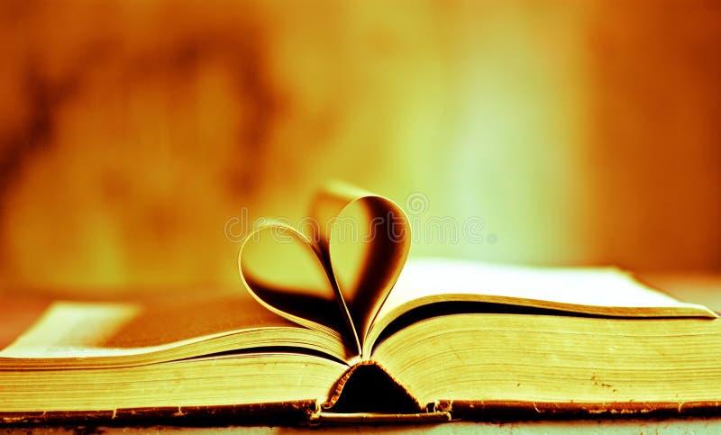 mój serce dla książek ilustracji