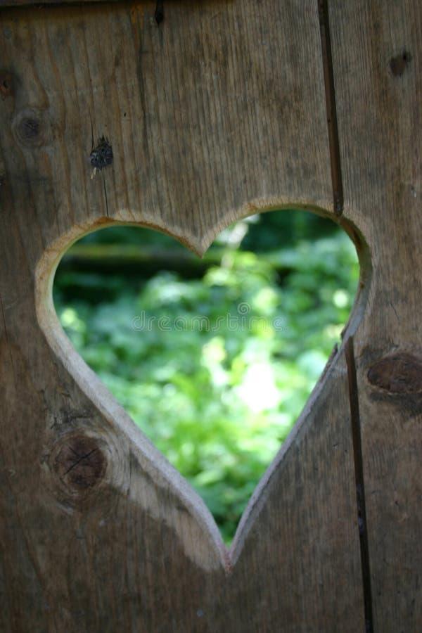 mój zielony serce zdjęcie royalty free