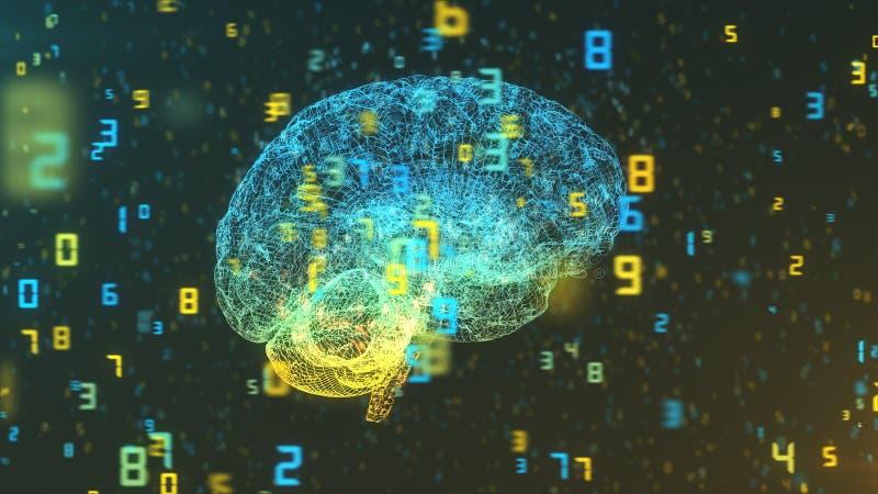 Mózg i liczby prawy widok - Duże statystyki i dane - ilustracja wektor