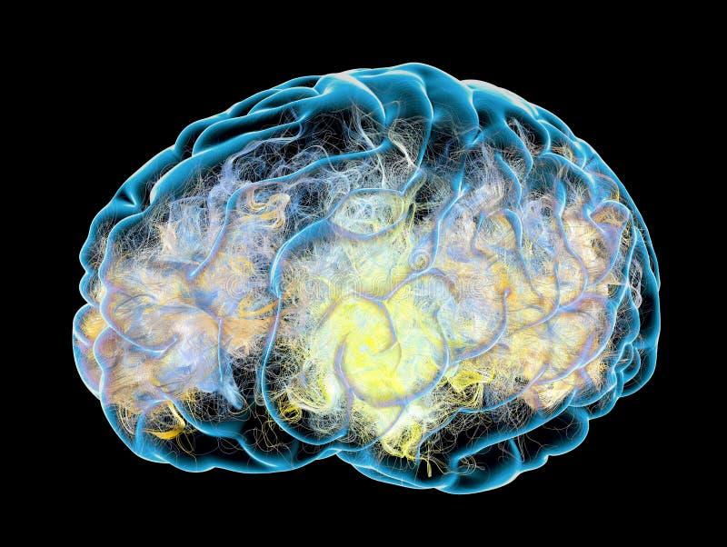 Mózg, synapses 3d rendering royalty ilustracja