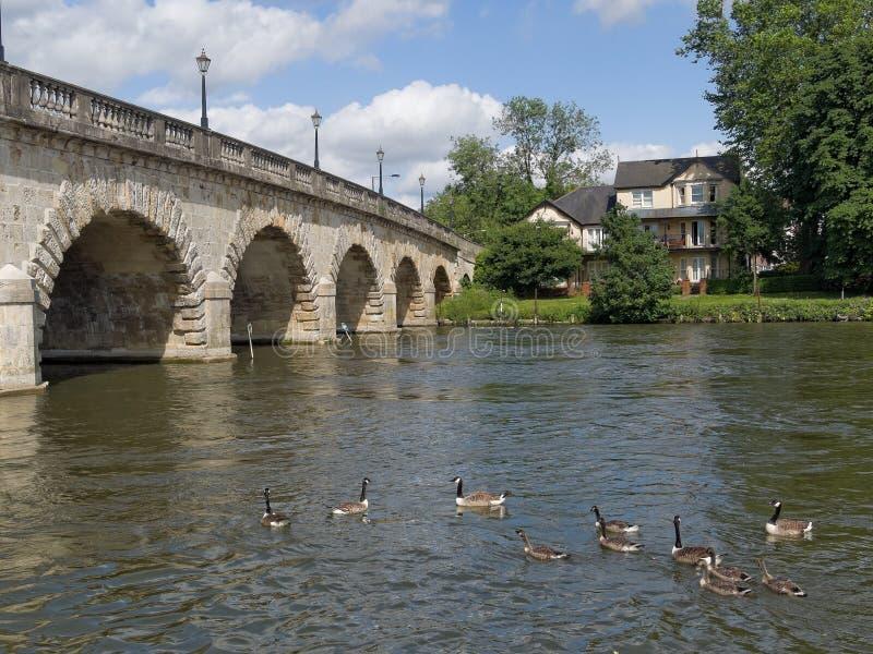 Mödomshinna England för flodThemsenbro arkivfoton