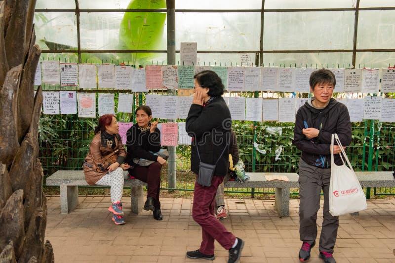 Mödrar samlar på en matchmaking parkerar, Shenzhen Kina royaltyfri fotografi