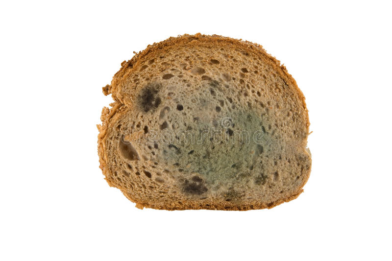 möglig skiva för bröd arkivbilder