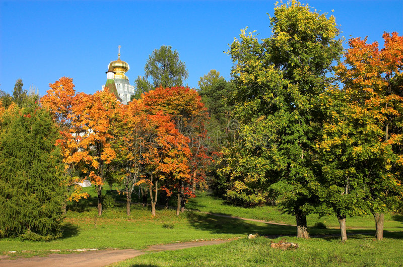 Mönch im Wald lizenzfreies stockbild