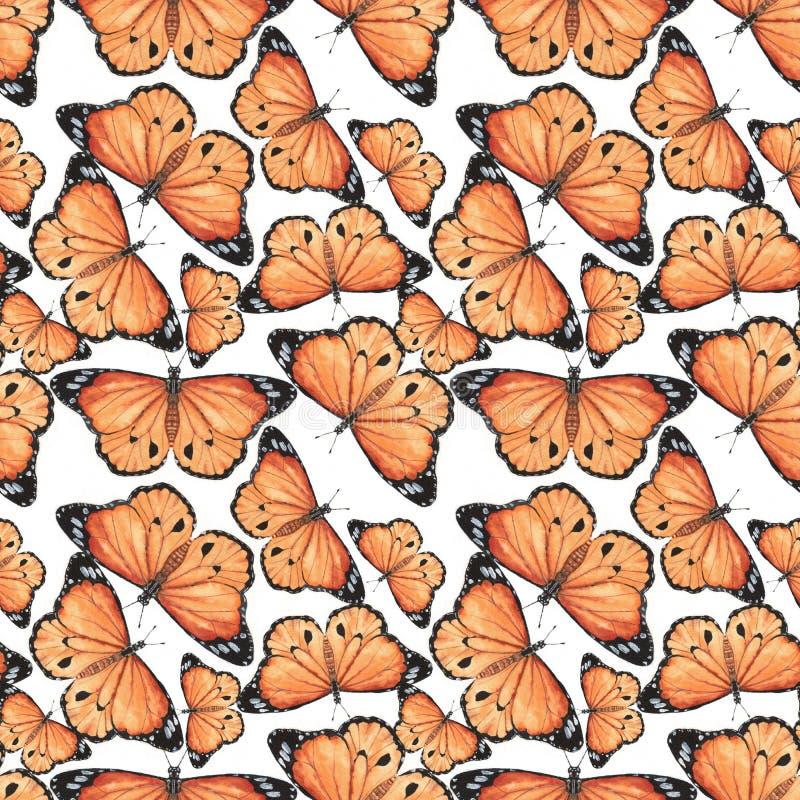 Mönstra med fjärilar royaltyfria bilder