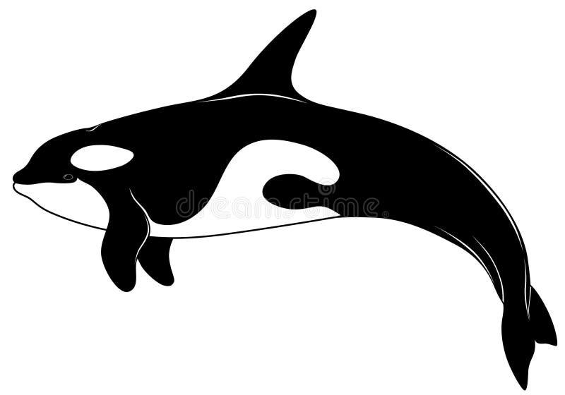 Mörderwal, Tätowierung vektor abbildung