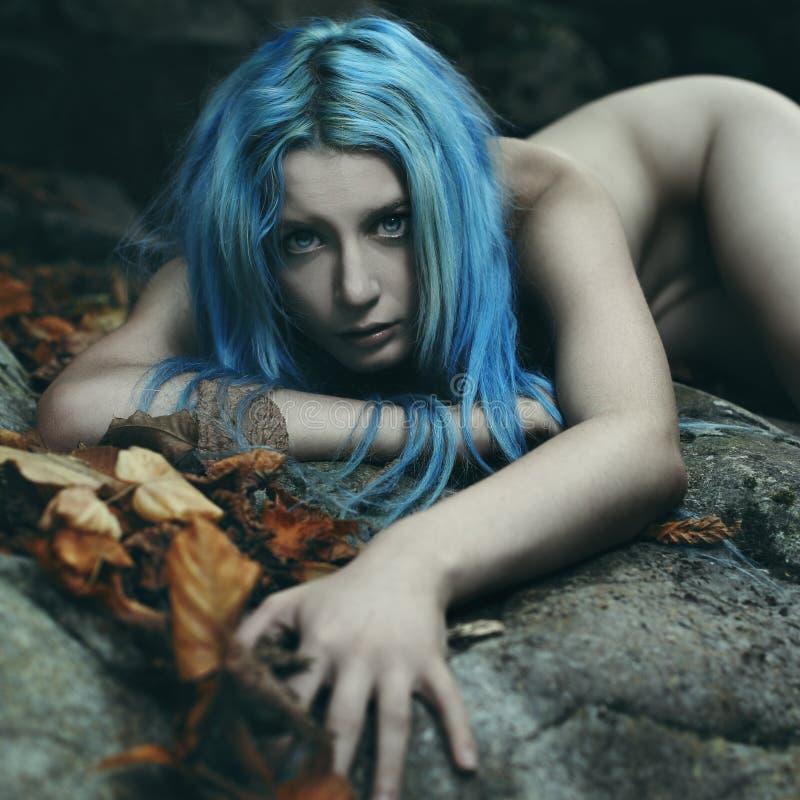 Mörk ande av skogen på strömstenar arkivfoto
