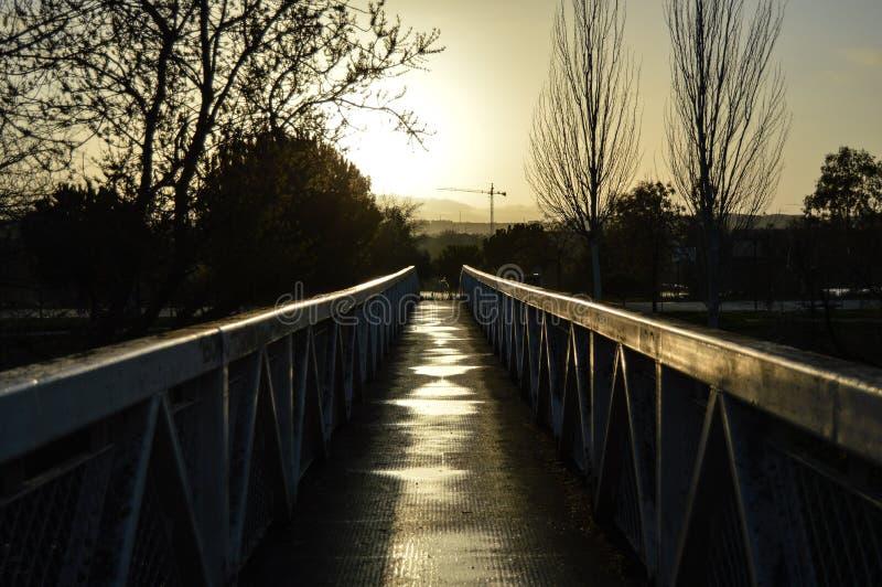 Mörk brokontrast fotografering för bildbyråer