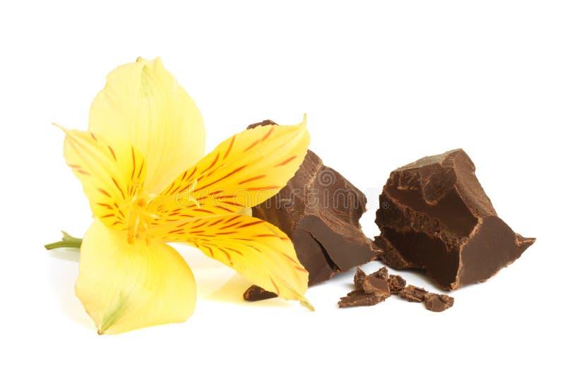 Mörk choklad med blomman av alstroemeria arkivfoto