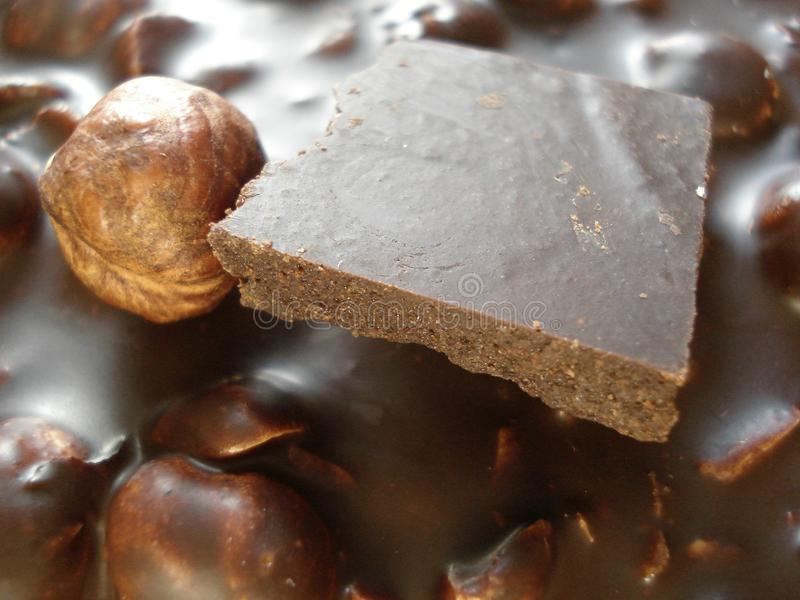 Mörk choklad med hasselnötter Skiva av chokladnärbilden sötsaker för efterrätt för bakgrundschoklad vita mörka fotografering för bildbyråer