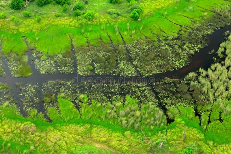 Mörk flod, flyg- landskap i den Okavango deltan, Botswana Sjöar och floder, sikt från flygplanet, UNESCOvärldsarv i Sout royaltyfria foton