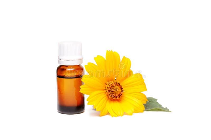 Mörk kosmetisk flaska av aromatisk olja för växt- medicin med calendulablomman som isoleras på vit Ringblommaextrakt arkivfoto