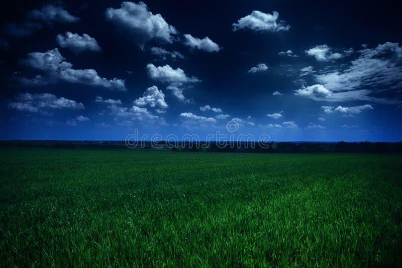 Mörk molnig himmel och grönt fält royaltyfri fotografi