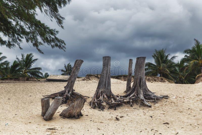 Mörk molnig himmel under stormigt väder på den Kailua stranden på den Oahu ön fotografering för bildbyråer