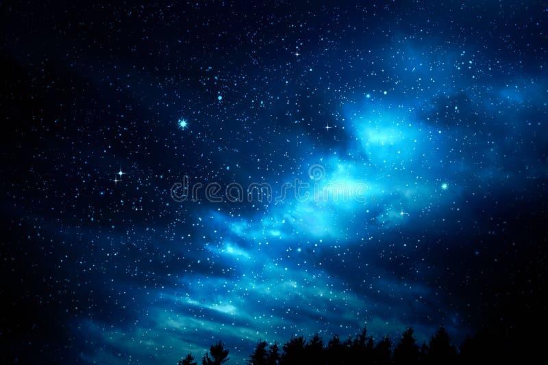 Mörk natthimmel med många stjärnor över av trädkonturn royaltyfria foton