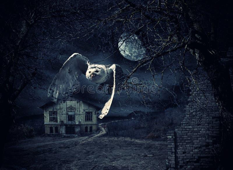 Mörk och läskig spökad herrgård med ugglan stock illustrationer
