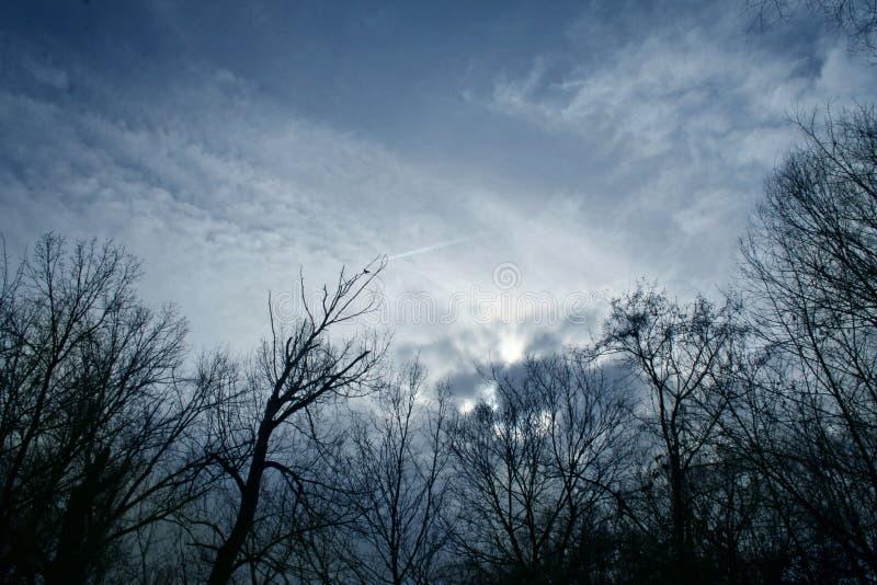 mörk sky arkivbild