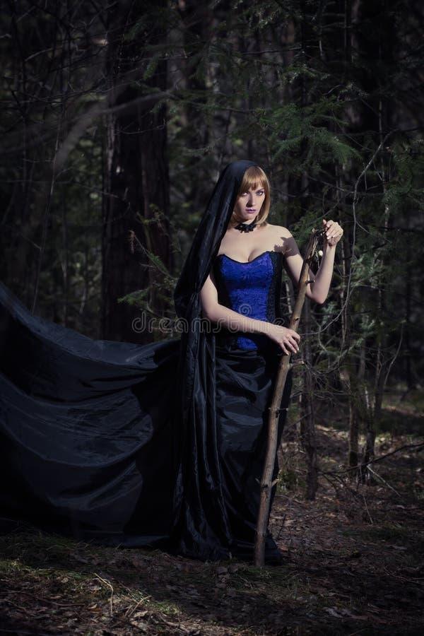Mörk stående av skogvårdaren Fantasi och royaltyfria foton