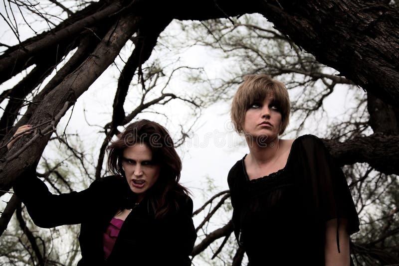 mörka skogkvinnor arkivfoto