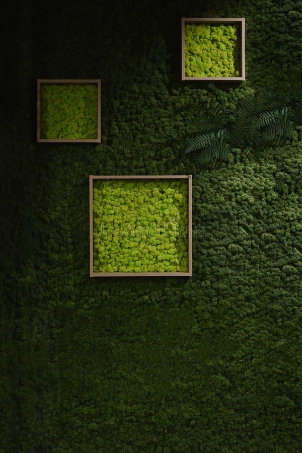 Mörker - grön mossavägg stock illustrationer