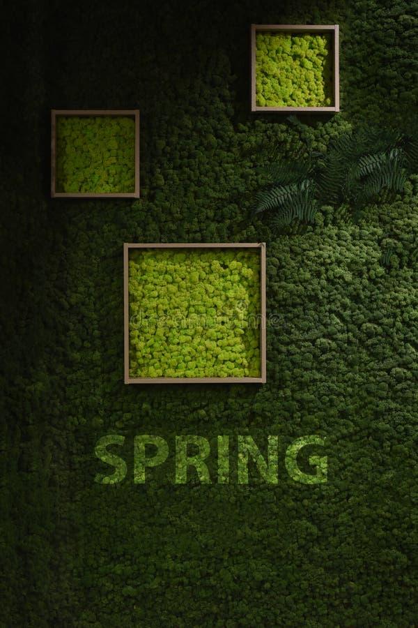 Mörker - grön mossavägg vektor illustrationer
